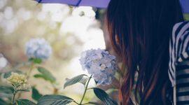 一人でいるのが気楽で好き。なのに一人が寂しいあなたに